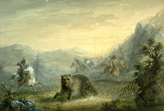 Hunting The Bear