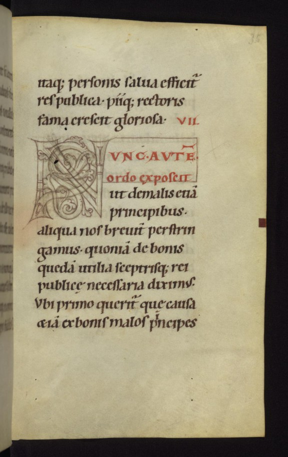 Unfinished decorated initial N