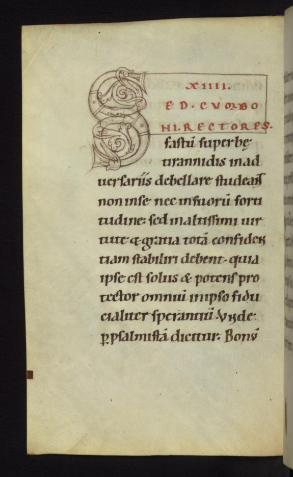 Unfinished decorated initial S