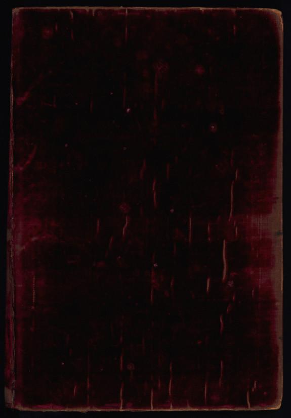 The Conradin Bible