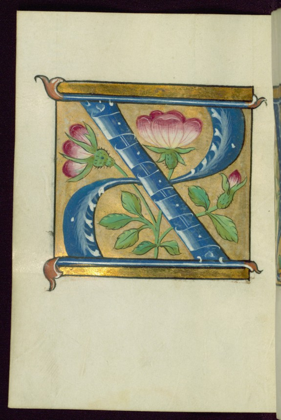 Leaf from Alphabet Book: Initial X