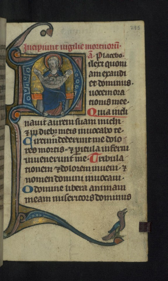 Initial D with Bosom of Abraham