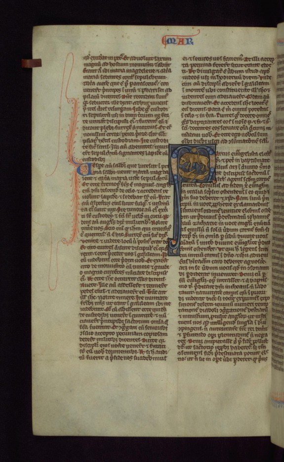 Historiated Initial M with Lion and Cub\