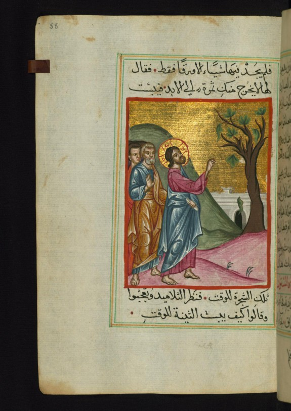 Jesus Curses the Fig Tree