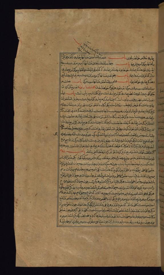 Leaf from Compendium of Medicine