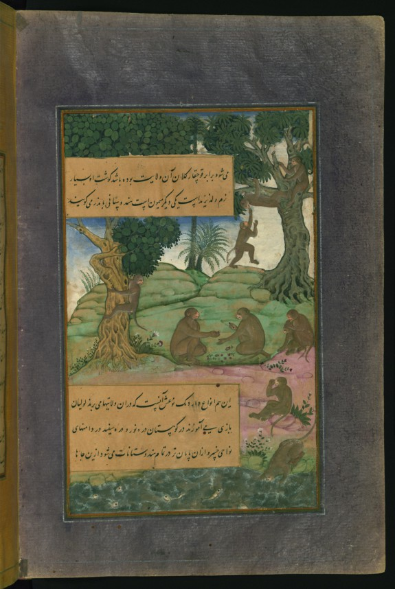 Animals and Birds of of Hindustan: MonkeysThat Can Be Taught to Do Tricks, from the Baburnama (Book of Babur)