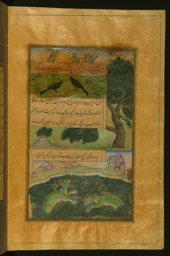 Birds of Hindustan and Alligators