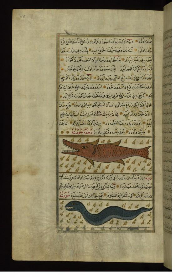 Two Fish from the Vaynah (Vinah?) Seas