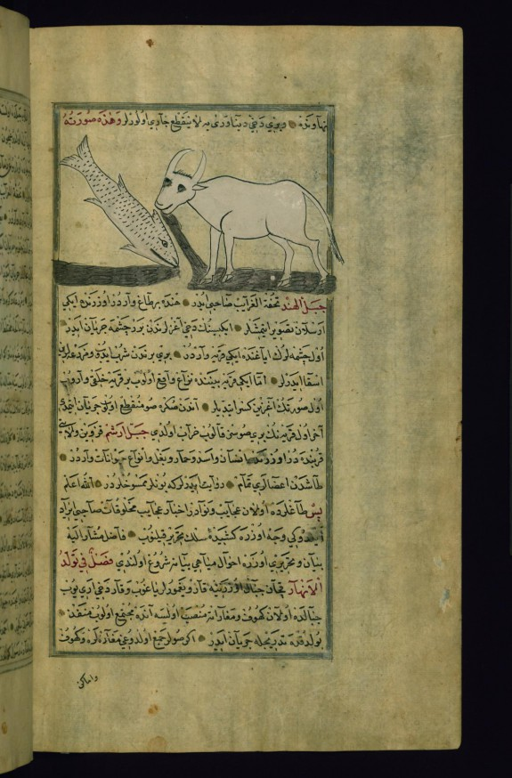 The Talisman of Nahavand: Water Pouring out of the Mouths of a Cow and a Fish