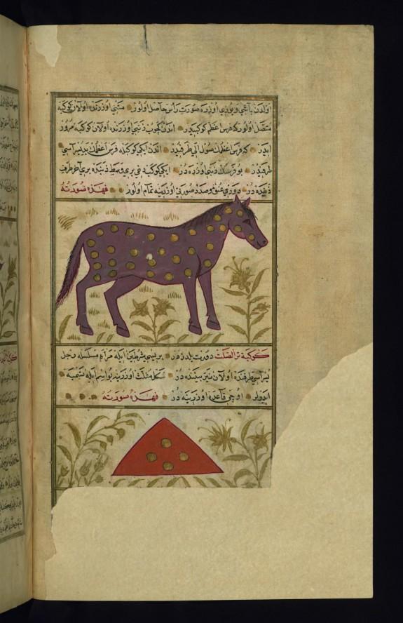 Pegasus (Caption Missing) and Triangulium