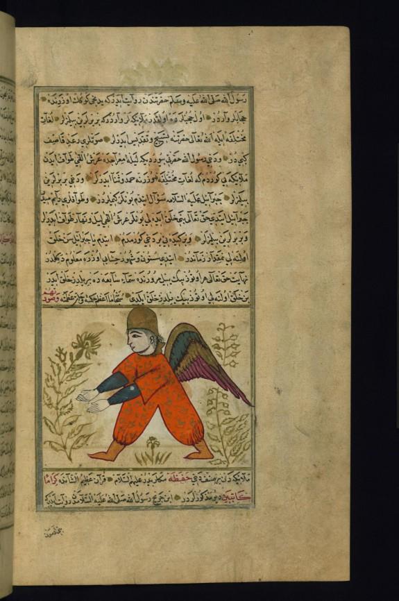 The Angel Rawya'il