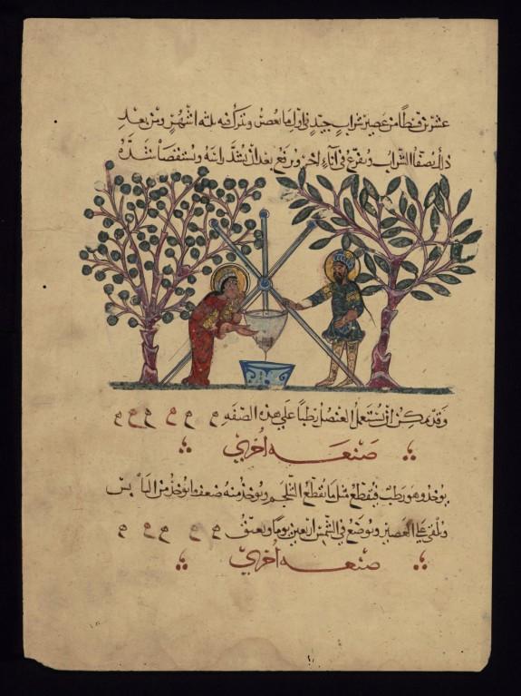 Single Leaf from the Arabic Version of Dioscorides' De materia medica