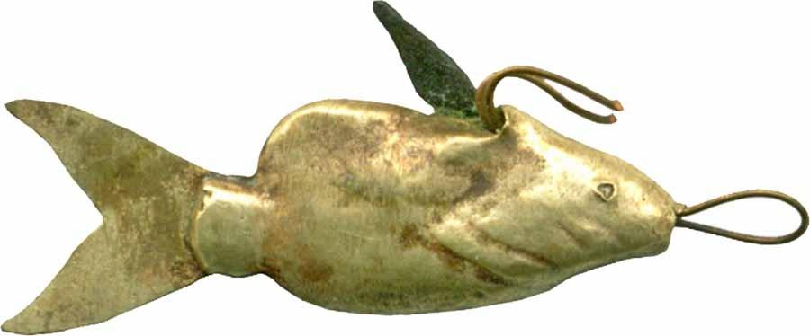 Nile Catfish