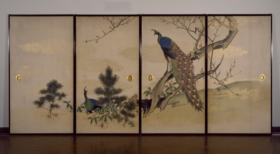 Peacock and Peahen with Flowering Prunus