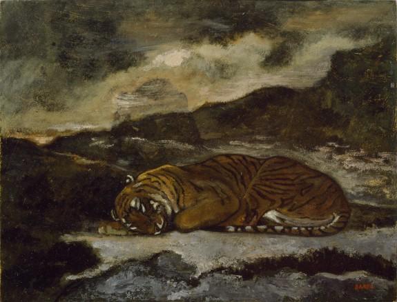 Tiger Asleep
