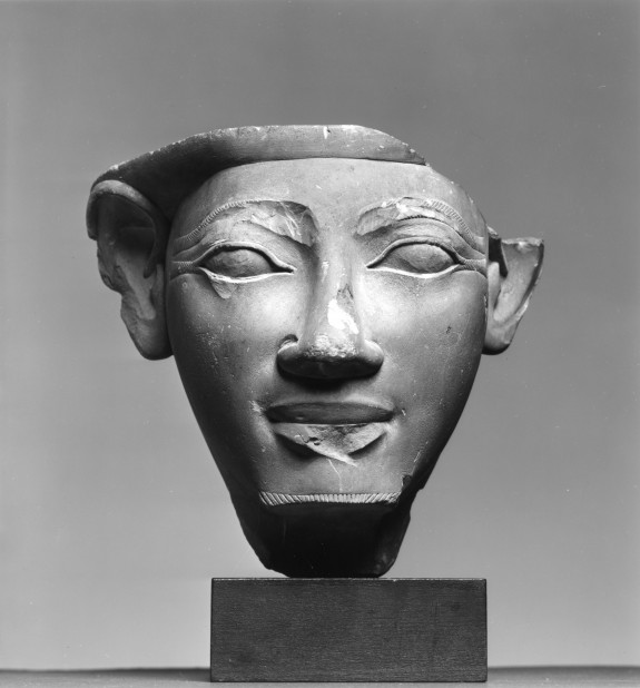 Model of a Male Face
