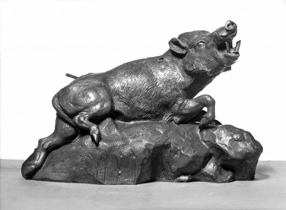 Wounded Boar
