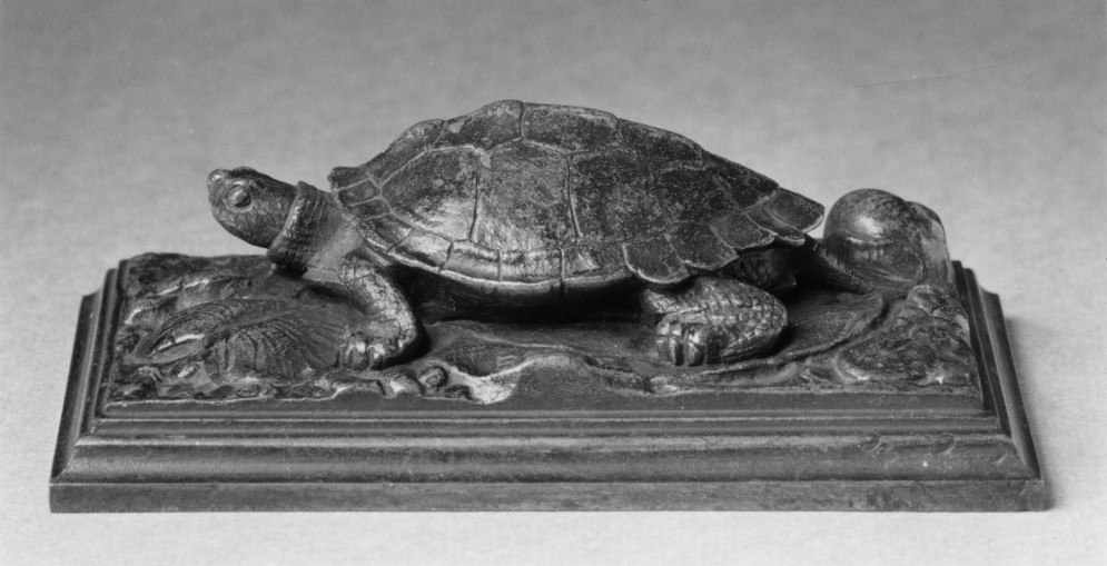Turtle on a Base Strewn with Leaves and a Shell
