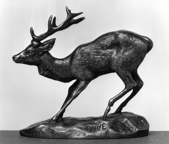 Frightened Stag
