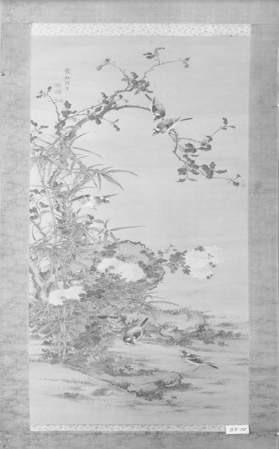 Birds Amid Flowering Plants