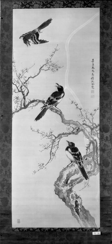 Three Birds and a Flowering Plum Tree