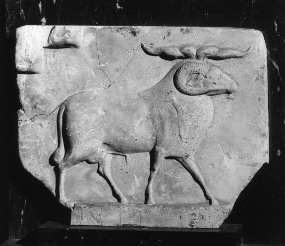 Sculptor's Model showing Ram with Grid