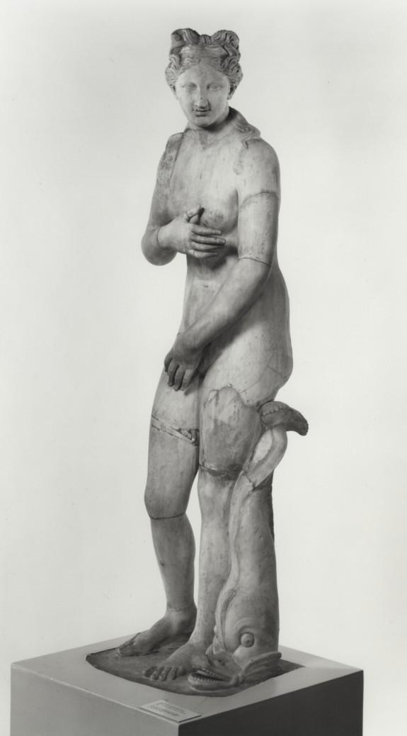 Venus of the