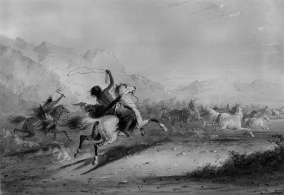 Capture of Wild Horses by Indians