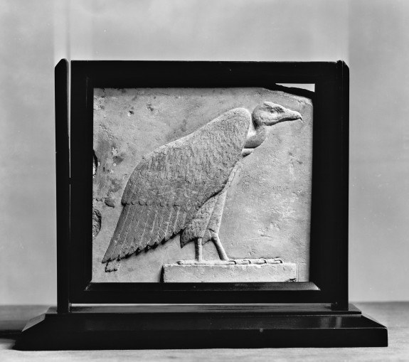 Sculptor's Model of a Vulture Hieroglyph