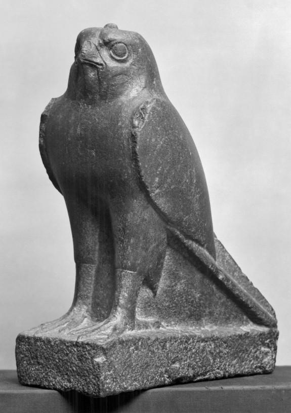Falcon Sacred to Horus