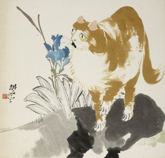 Cat and Flower