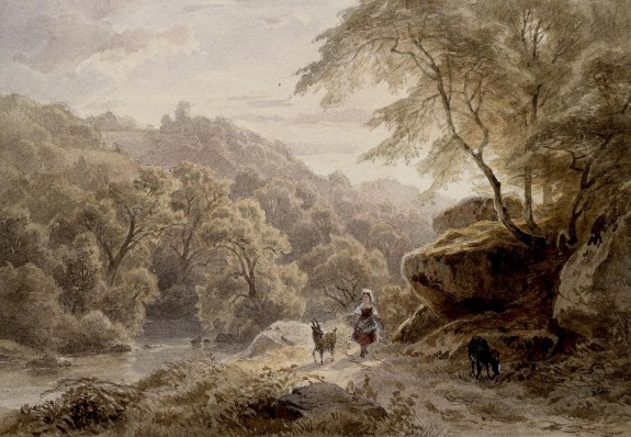 Woodland and River Scene