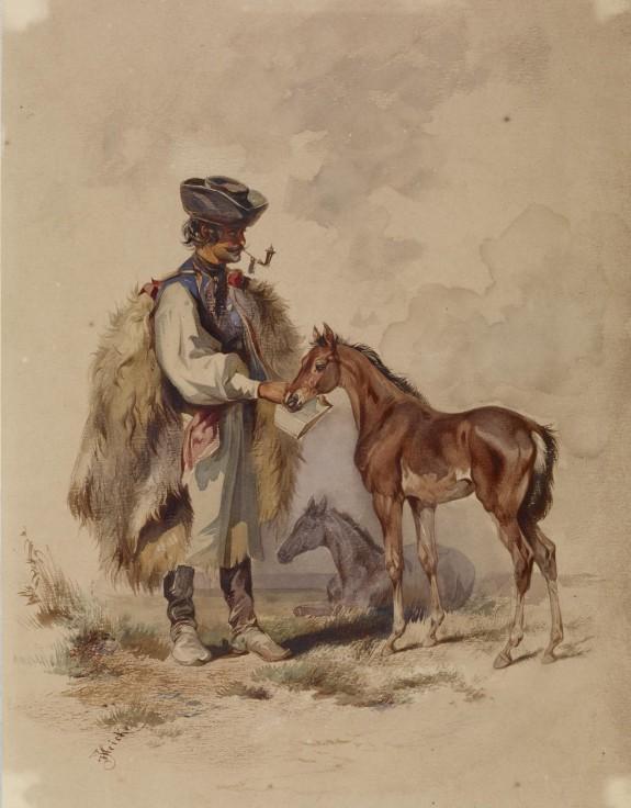 Peasant Feeding a Colt