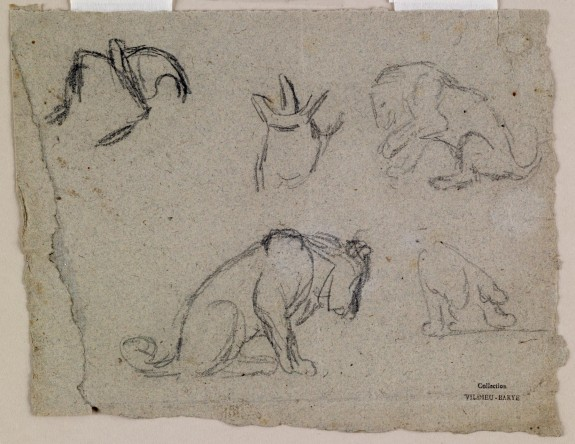 Sketches of a Lion