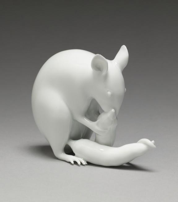 Rat Eating a Daikon