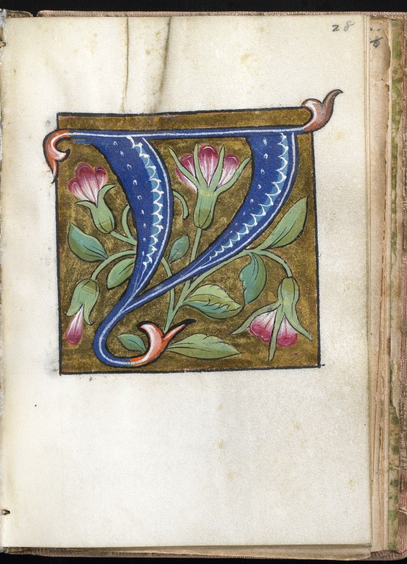 Leaf from Alphabet Book