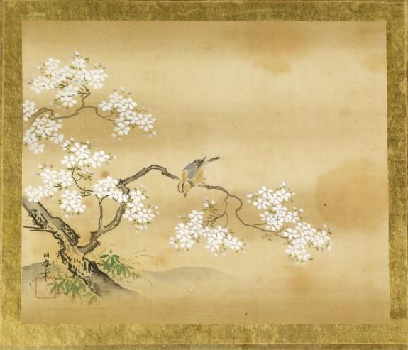 Bird in Cherry Tree