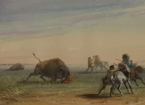 Buffalo Turning on His Pursuers