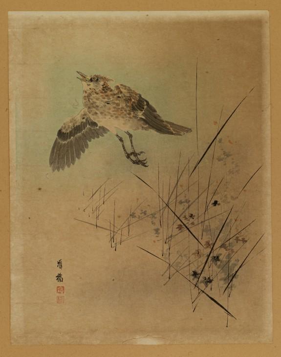 Bird Taking Flight from Autumn Grasses
