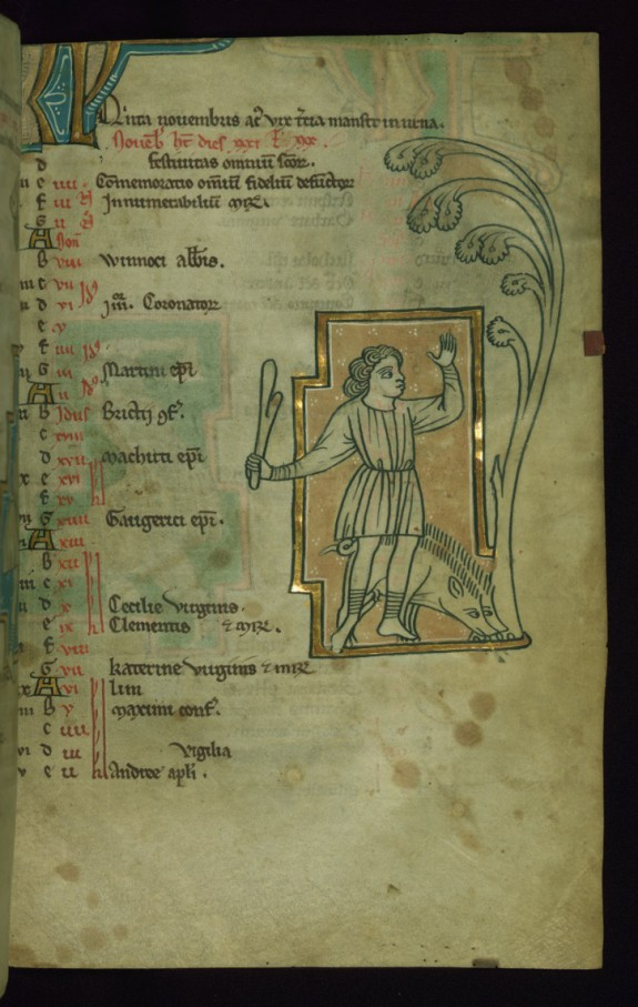 Leaf from Touke Psalter: November Calendar, Man Knocking Acorns Out of a Tree to Feed Pigs