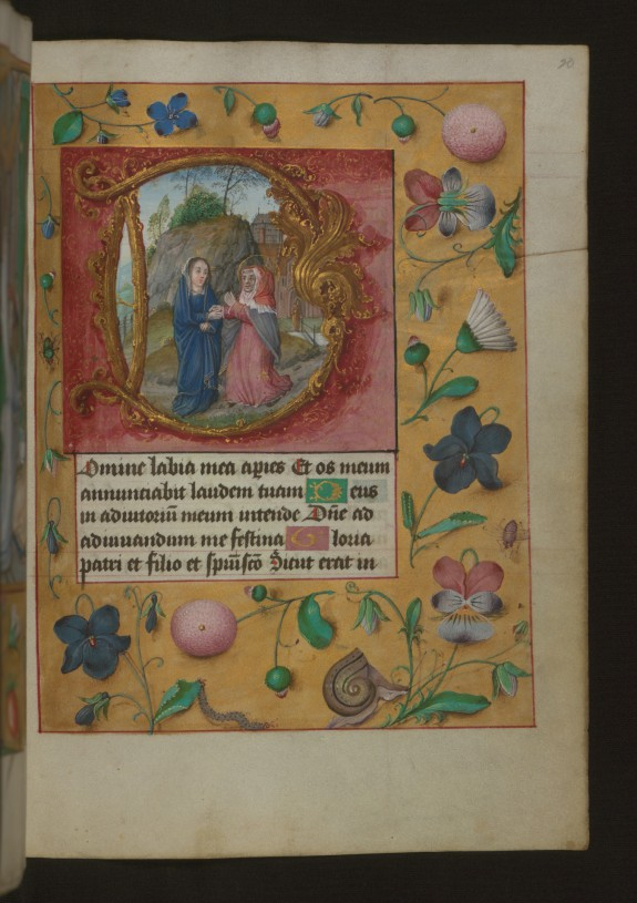 Leaf from Aussem Book of Hours: Hours of the Virgin, Visitation with Flowers and Insects in Margins