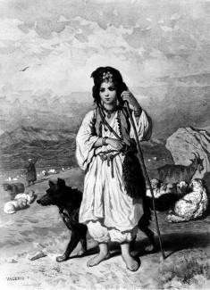 Little Shepherdess and Flocks
