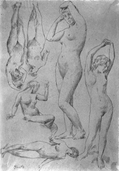 Studies from the Nude