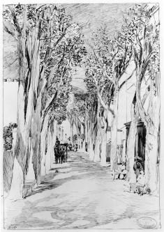 Les Platanes en Hiver, Route de Nice