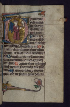 Initial D with Pilgrim Below the Face of God; Hybrid Animal in Margins