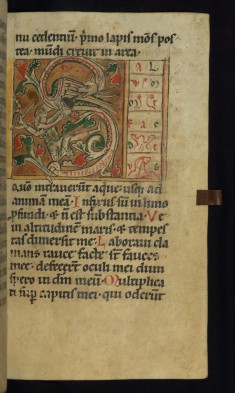 Initial S with Man Battling a Dragon