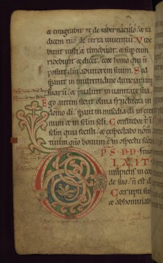 "Decorated initial ""D"""