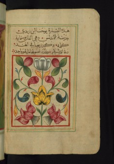 Painted Floral Composition Ending the Preface to the Gospel of Matthew