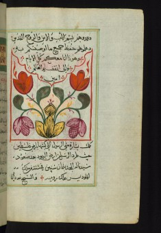 Floral Painted Tailpiece to the Gospel of Matthew
