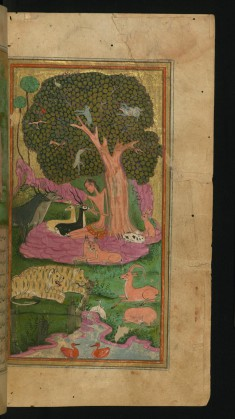 Majnun in the Company of Animals in the Wilderness